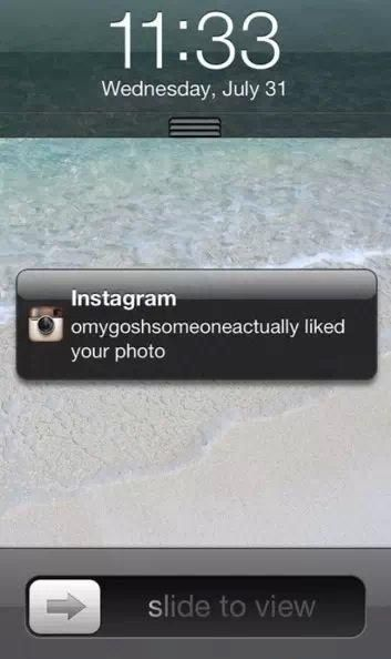 This Instagram user, who had the best idea for a username. | 23 People Who Saw An Opportunity And Took It