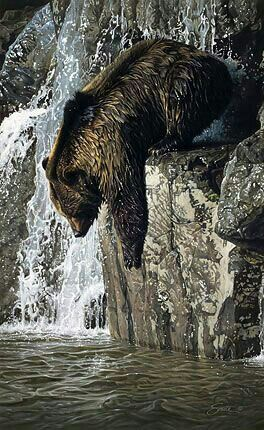 Diving Grizzly Bear!