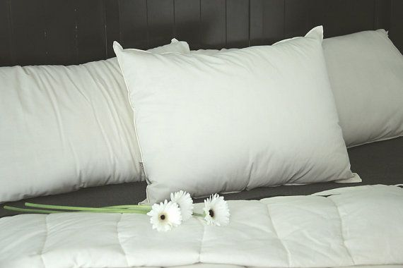 Organic Wool Pillow  Natural White Standard Bed by TRUNKandTREADLE
