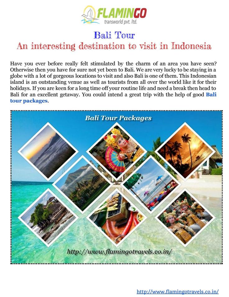 Bali Tour packages: An interesting vacation spot t  Bali is a destination that…
