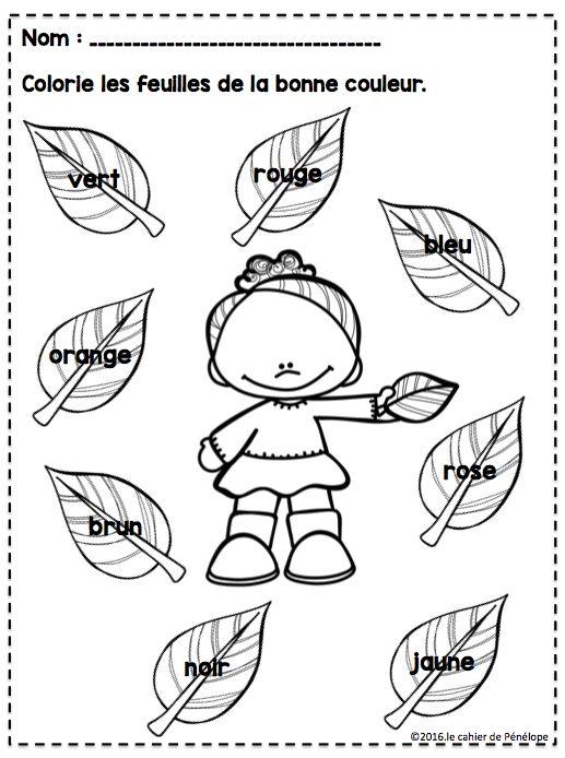 Je viens de terminer trois petites fiches pour mes cocos de la maternelle, en prévision de mon thème sur l'automne. (Je termine les pommes c...