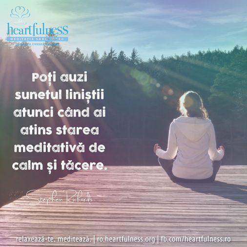 Poți auzi sunetul liniștii atunci când ai atins starea meditativă de calm și tăcere. ~ Stephen Richards #heartfulness   #cunoaste_cu_inima   #hfnro  Heartfulness România - Google+