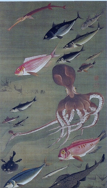 Ito Jakuchu silk painting at National Gallery march 30. Love how contemporary this 200+ year old painting is.