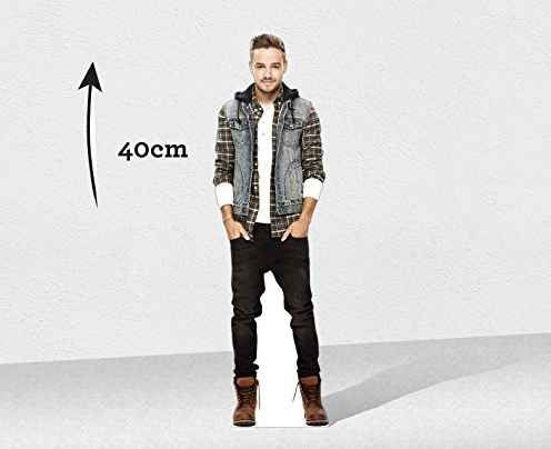 A desktop cutout of your favorite member of One Direction.