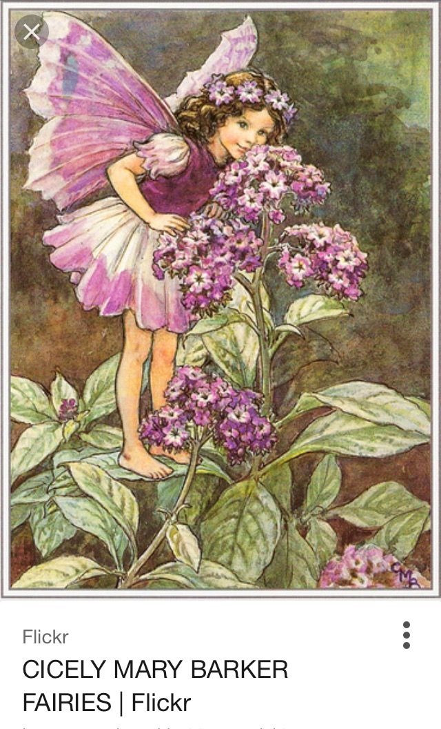 Cicely Mary Barker was an English illustrator best known for a series of fantasy illustrations depicting fairies and flowers. Barker's art education began in girlhood with correspondence courses and instruction at the Croydon School of Art. Died: February 16, 1973, Worthing Hospital, Worthing, United Kingdom