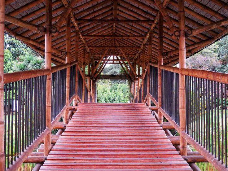 12. Puente de Guadua del Lago Principal.