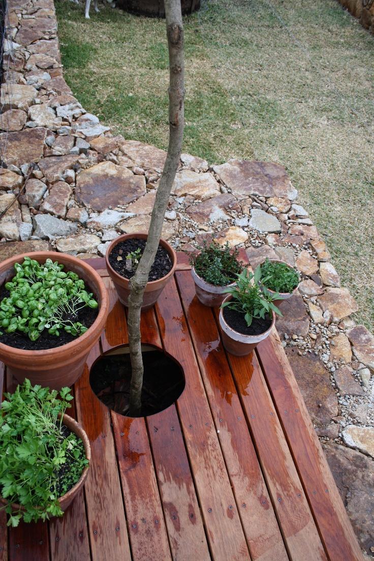 garden detail  greghatton.com