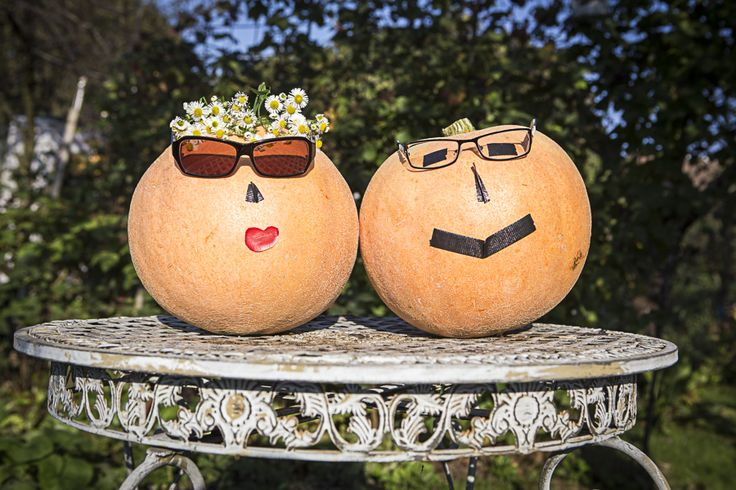 May I introduce to you: Mister and Misses Pumpkin. An awesome Couple, aren't they?