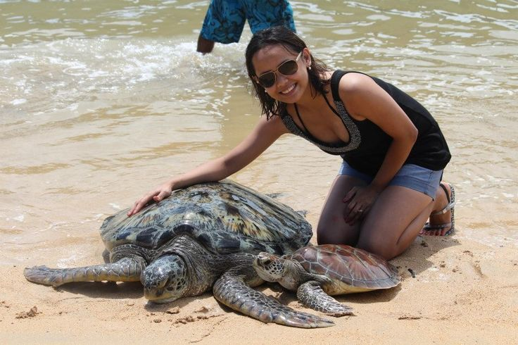 Touched a sea turtle!!!