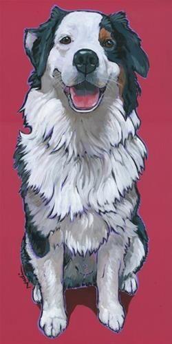 """Daily Paintworks - """"Australian Shepherd"""" - Original Fine Art for Sale - © Nadi Spencer"""