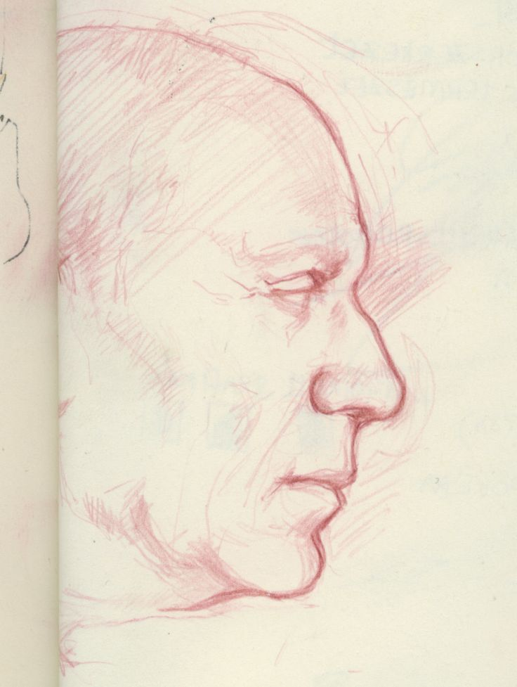 sketch portrait of Picasso - colored pencil on paper Virag Papp, 2009 #Picasso #profile #study #sketch