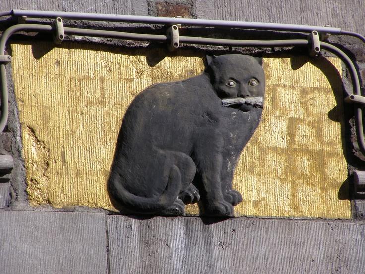 gevelsteen zwarte kat