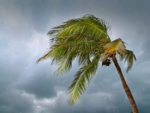 Experts Predict a More Active Hurricane Season in 2016