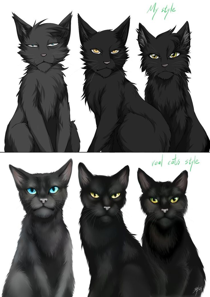 Warriors: Crowfeather's family by Marshcold.deviantart.com ...