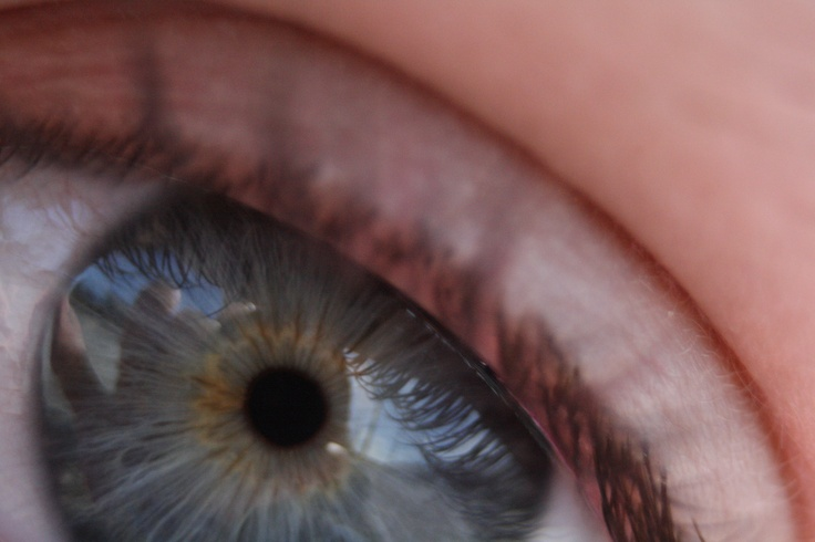 Not the clearest photo, but I like seeing the reflection in the eye.