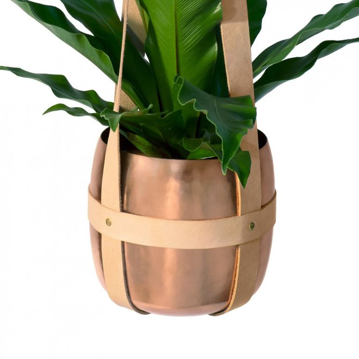 Leather plant hanger and metallic plant pots by Lightly | Collected by LeeAnn Yare