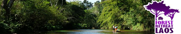 Welcome to Forest Retreat Laos | Eco Tourism Specialist in Luang Namtha, Northern Laos
