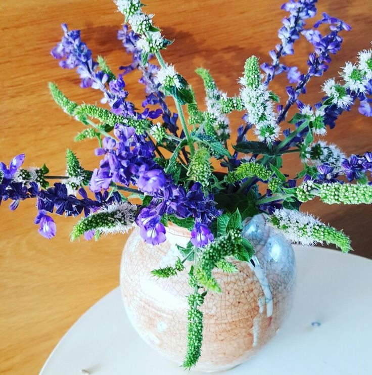 Weekly posy - salvia and mint flowers
