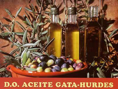 D.O. Aceite Gata-Hurdes