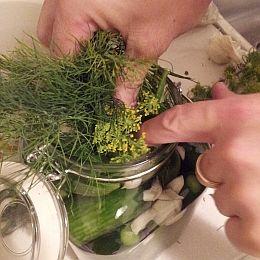 Fermented Foods List, Probiotic Foods