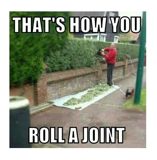 how to buy weed and roll a joint