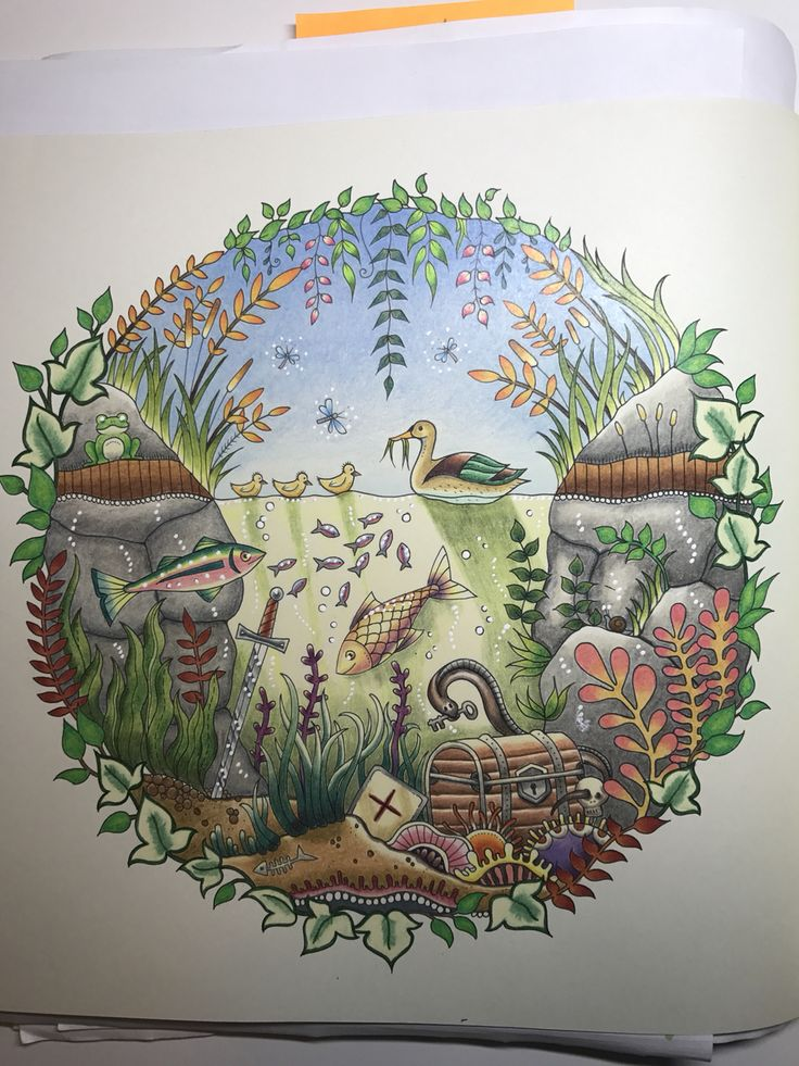 Duck Pond From Enchanted Forest By Johanna Basford I