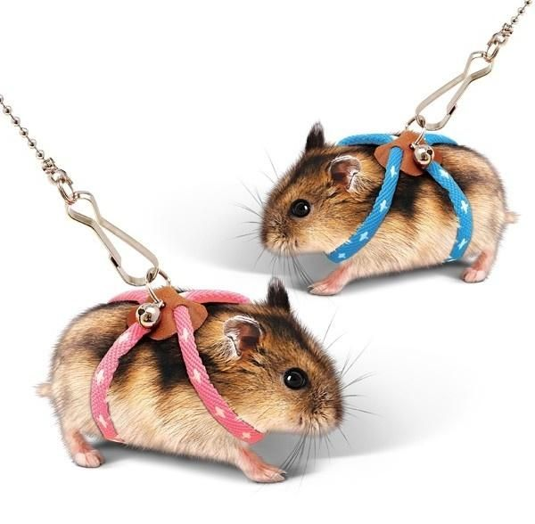 Small Pet Adjustable Soft Harness Leash Bird Parrot Mouse Hamster
