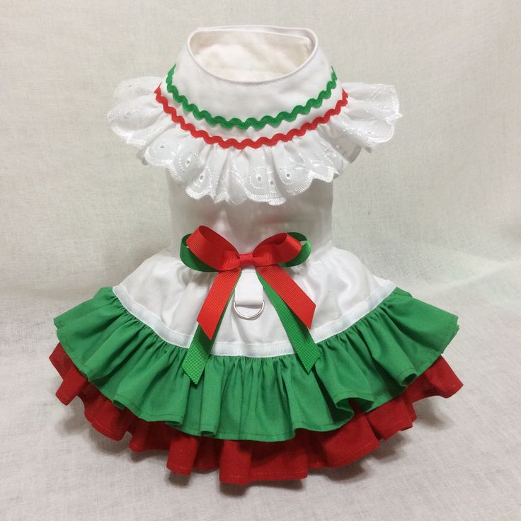 A personal favorite from my Etsy shop https://www.etsy.com/listing/288602115/cinco-de-mayo-dog-dress