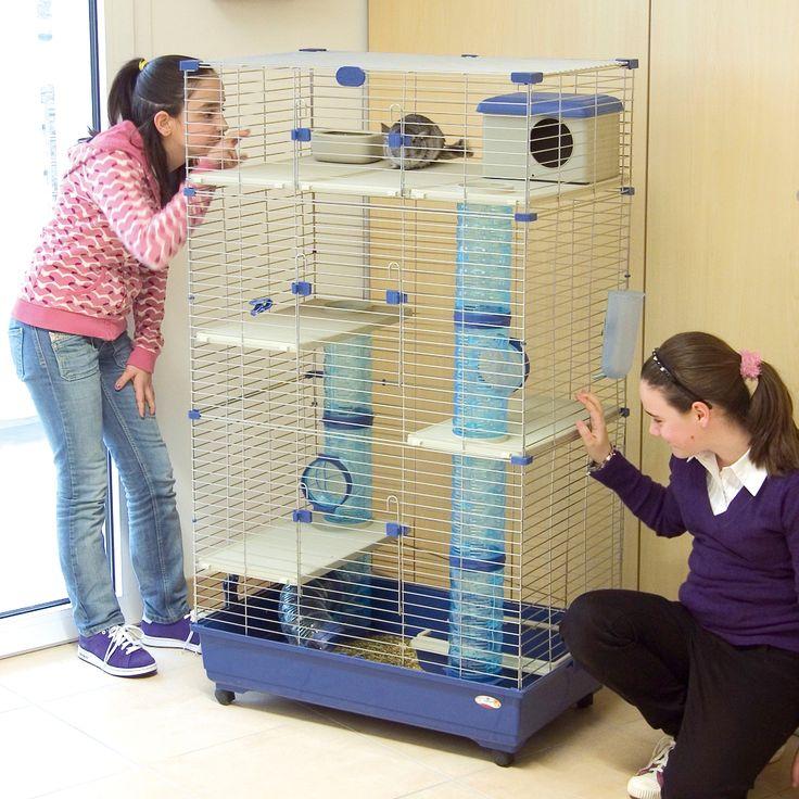 marchioro sara multilevel small animal cage