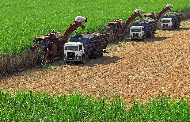 Máquinas agrícolas durante colheita de cana-de-açúcar em Mirante do Paranapanema (SP)  Ato Criminoso, agora descoberto.