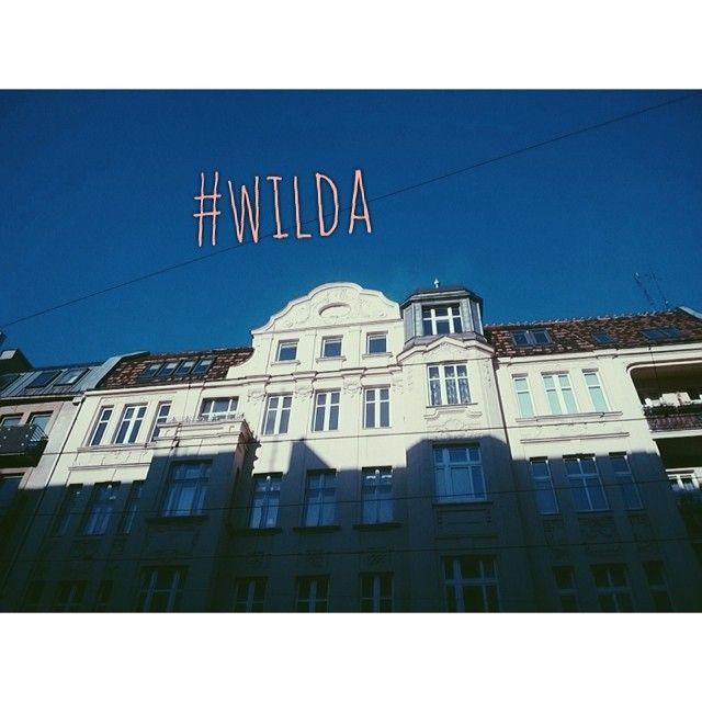 #wilda