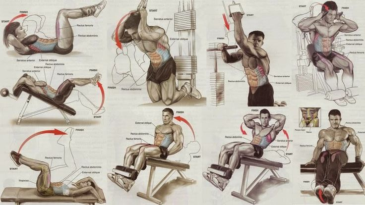 Abs Exercises for Men and Women