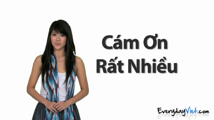 Learn Vietnamese: Lesson 1: Thank You, You're Welcome, and No Problem in...