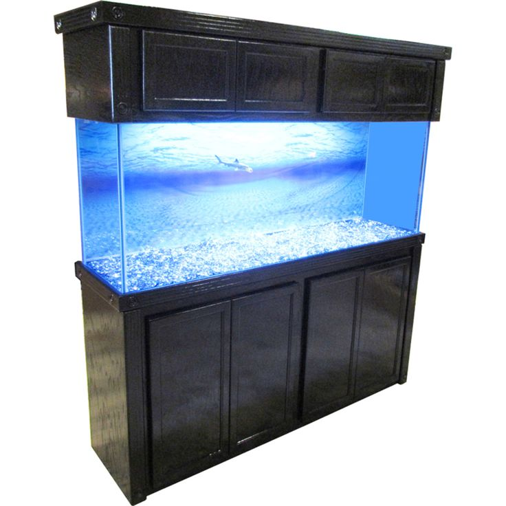 Fish tank with stand cabinet we appreciate or local fish for Fish tank heater petco