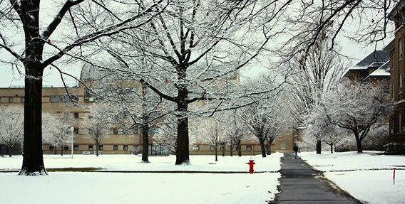 Here are our choices for the 10 most lovely college campuses to be on this winter.