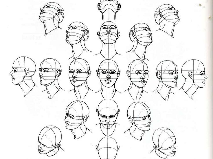 number of head drawing tutorials. Useful for when learning to draw positions