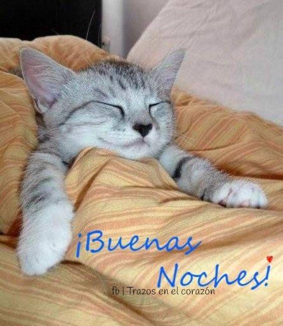 ¡Buenas Noches! @trazosenelcorazon