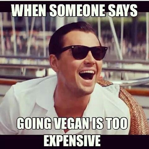 Hahahaha .. it almost hurts my brain to hear this. HI WELCOME TO EARTH, WHERE ANIMAL MEAT COSTS MORE THAN PLANTS :)