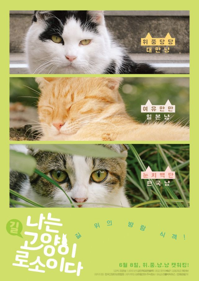 """[Photo] Added special character poster for the upcoming Korean documentary """"I Am a Cat"""""""