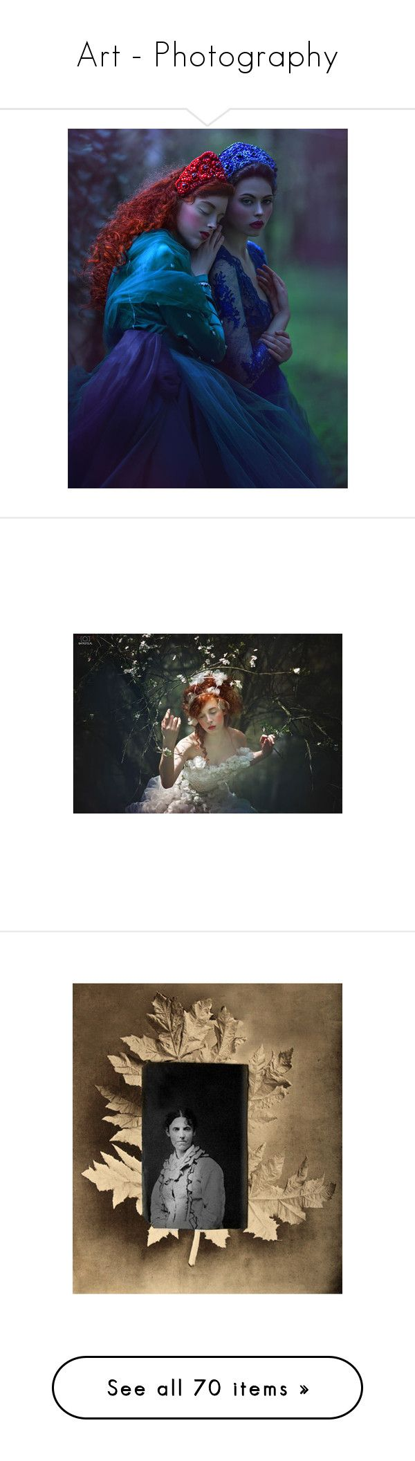 """""""Art - Photography"""" by chilirose-creative ❤ liked on Polyvore featuring laughingdogstudio, home, home decor, wall art, brown, brown home decor, tree wall art, tree home decor, contemporary wall art and oversized wall art"""