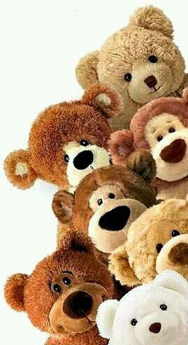 warm & fuzzy bears