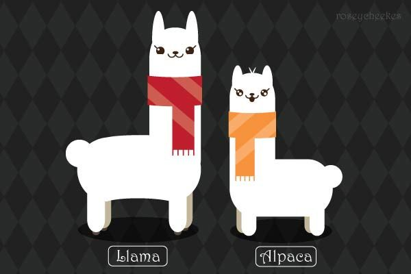 #llama---could do something with a design like this!!!