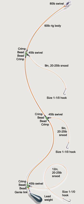 fishing rig diagrams fishing rigs more