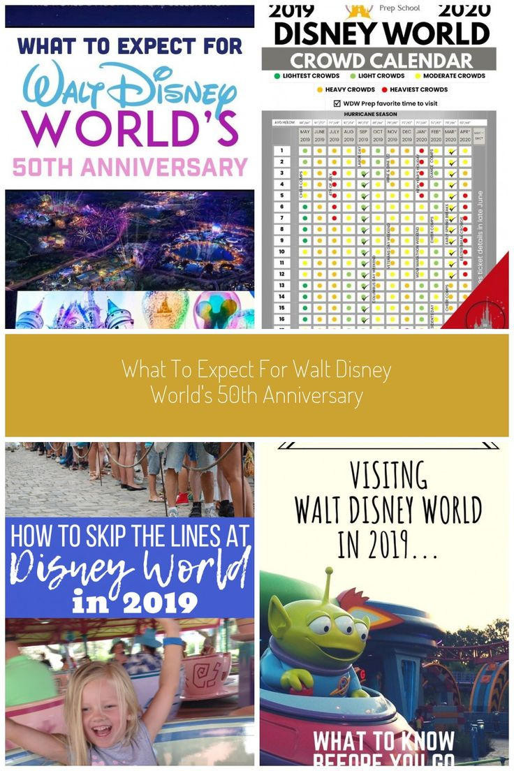 What To Expect For Walt Disney World S 50th Anniversary In 2020 Disney World Walt Disney World Disney Animal Kingdom Villas