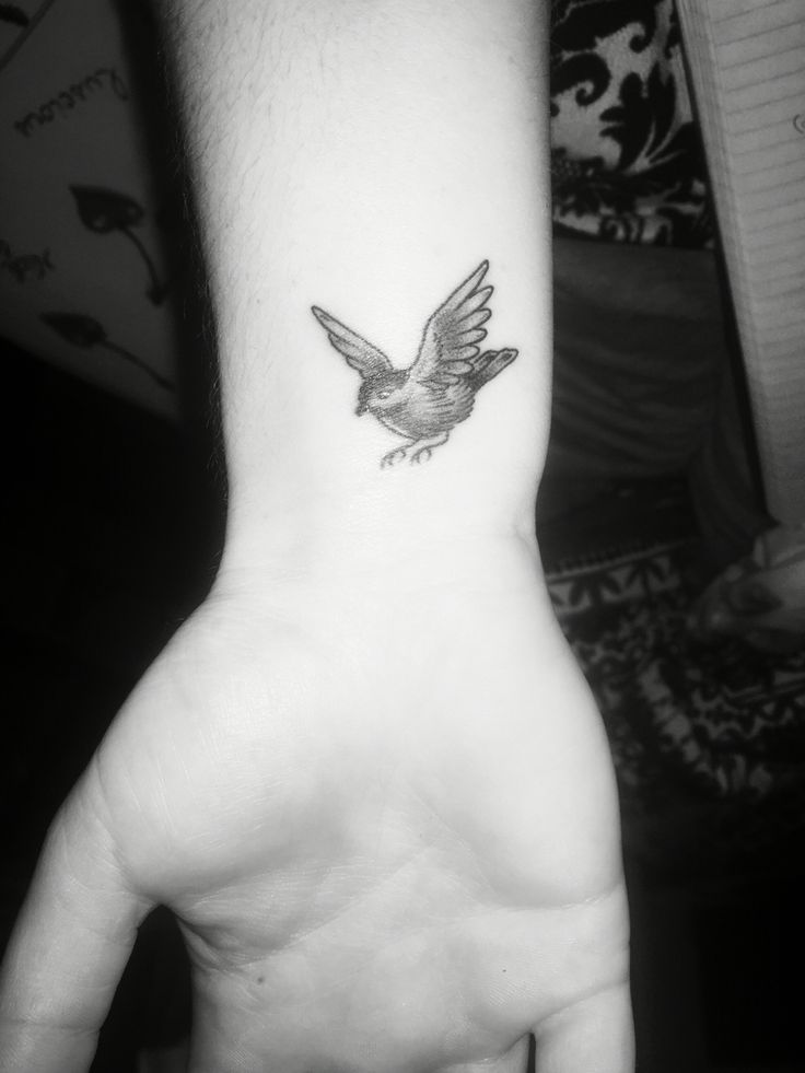 17 best images about tatoos on pinterest watercolors for Small cardinal tattoo