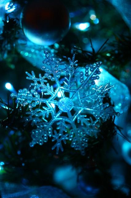 ...azul......... | | ❤✿« | | ♫ ♥ X ღɱɧღ ❤ ~ ♫ ♥ X ღɱɧღ ❤ ♫ ♥ X ღɱɧღ ❤ ~ Mon 22nd Dec 20142014