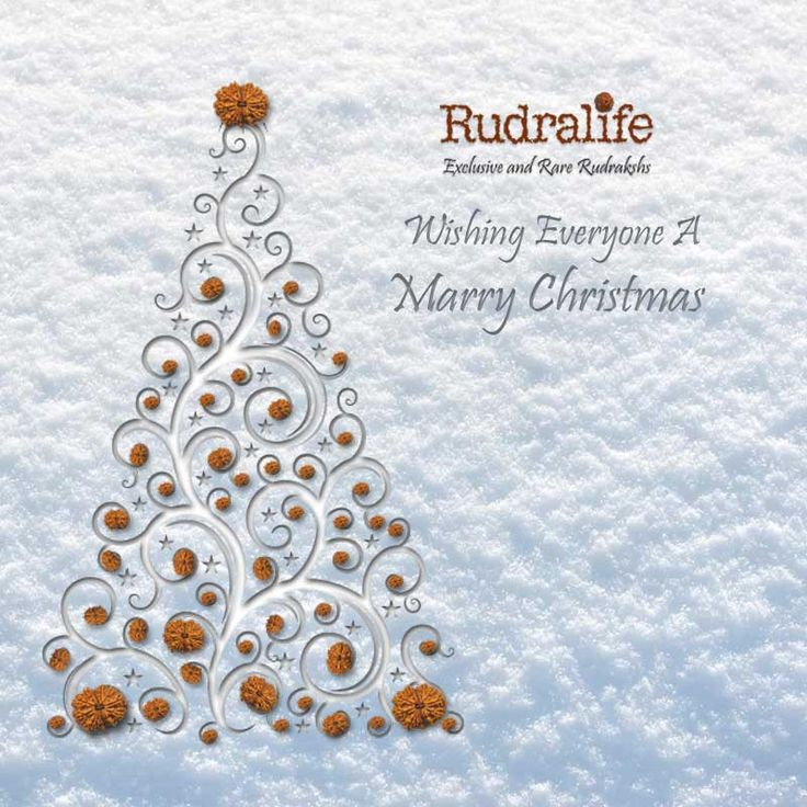 Rudralife wishing everyone a Marry Christmas.