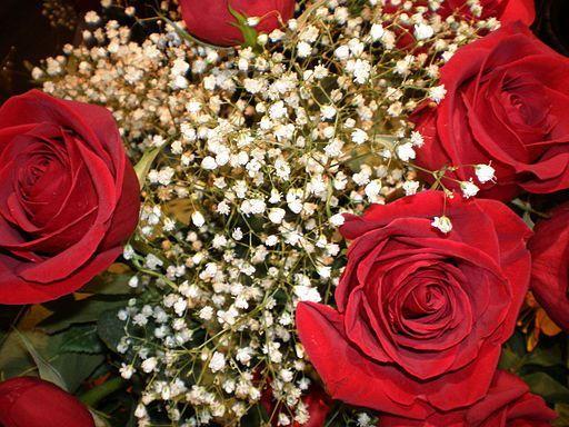 valentine nationality name