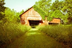 Old: Barns Barns Woods Mi, Beautiful Barns, Tractors Barns, Boathouse, House Barns, Abandoned Barns, Houses Barns, Barns Red, Barns Country Sweet