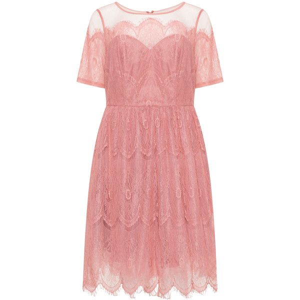 CHI CHI Curve Dusky-Pink Plus Size Lace tulle cocktail dress ($61) ❤ liked on Polyvore featuring dresses, plus size, lace fit-and-flare dresses, a line cocktail dress, plus size lace dress, red lace cocktail dress and pink dress